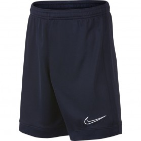 Детские шорты Nike B Dry Academy