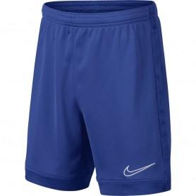 Laste lühikesed püksid Nike B Dry Academy