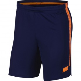 Nike Dri-FIT Squad shorts