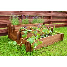 Rised bed for vegetables