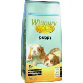 Willowy Gold Dog Puppy 15kg