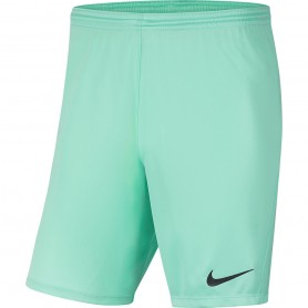 Children's shorts Nike Dry Park III NB K