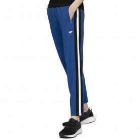 женские спортивные брюки 4F H4L20 SPDD002