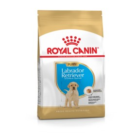 Puppy Dry Food 15kg Labrador Retriever