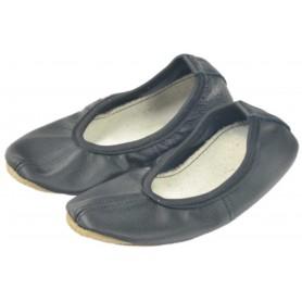 Baleriin kingad