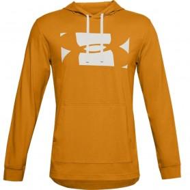 Men's sweatshirt Under Armour Sportstyle Hoodie