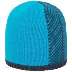 Vīriešu ziemas cepure 4F CAM011